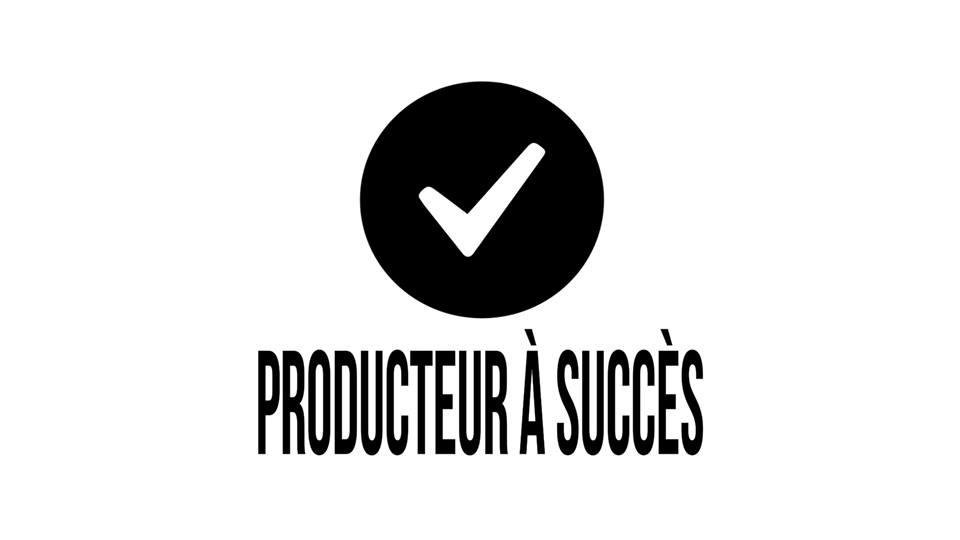 formation producteur et artiste a succes